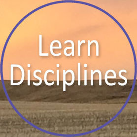 Learn Disciplines
