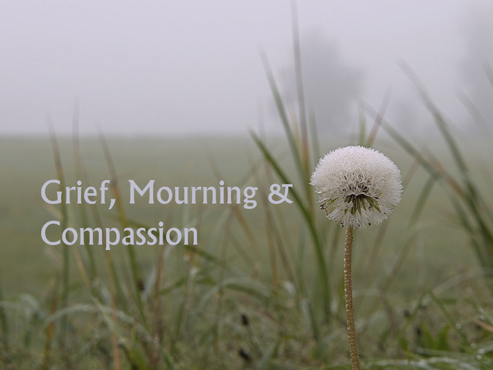 Grief, Mourning and Compassion