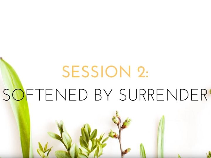 VIDEO: Session 2, Softened by Surrender