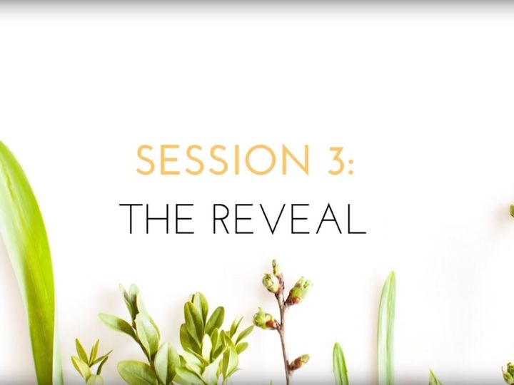 VIDEO: Session 3, The Reveal