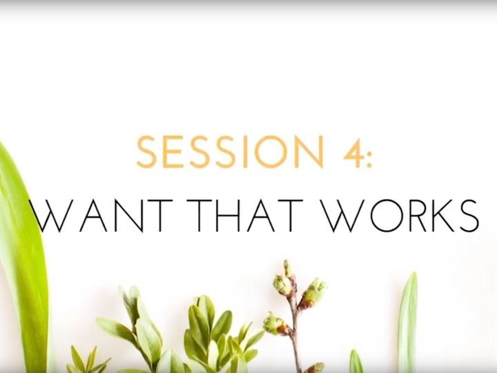 VIDEO: Session 4, Want that Works