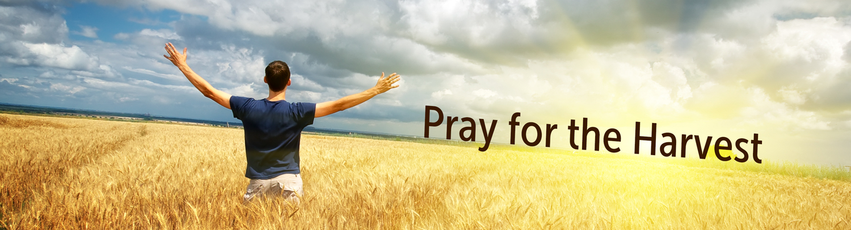 CNBC.ca - Pray for the Harvest 2017 Interactive Calendar